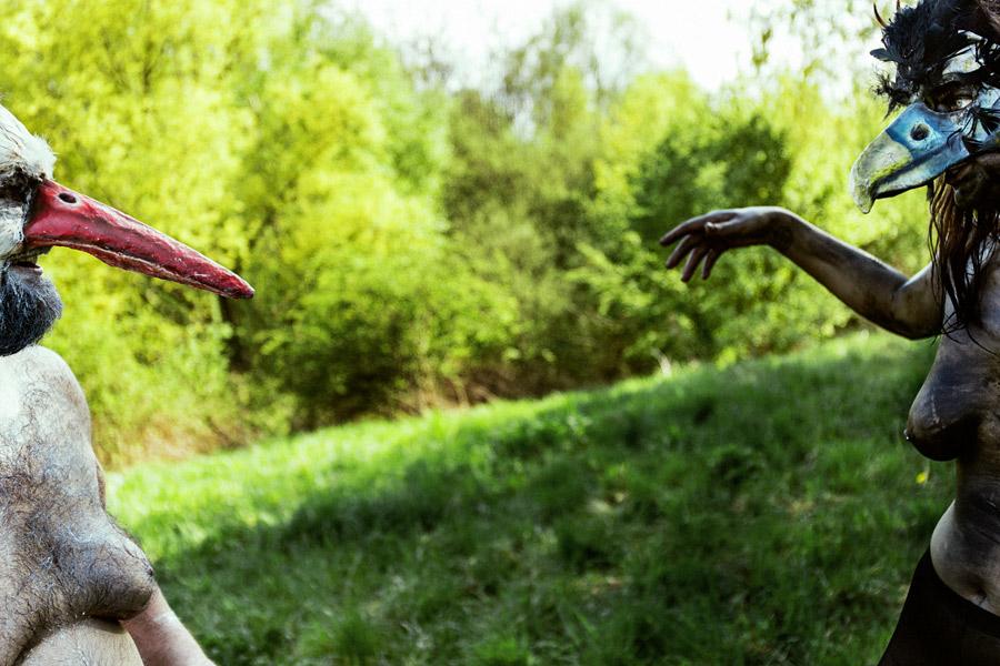 der dicke storch