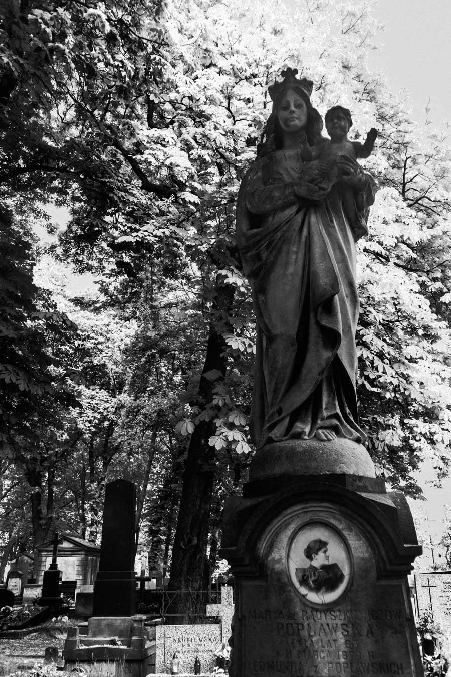 Powązki-Friedhof