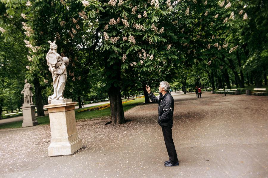 Sächsischer Garten (Park Saski)