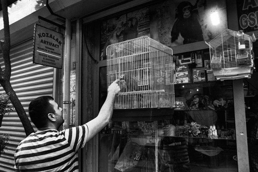 Istanbul - Balat und Fener