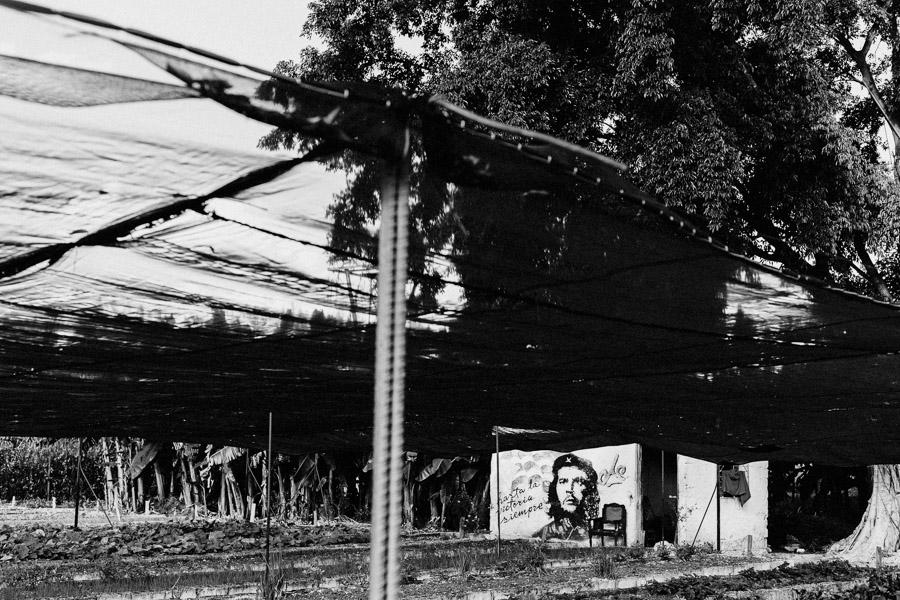 Kuba, Oktober 2016 - Santa Clara_Antje_Kroeger_102