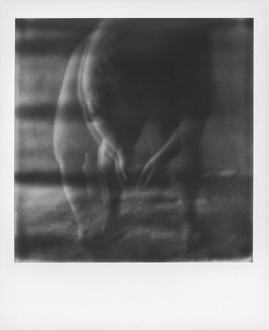 KORPUS Polaroid Antje Kroeger
