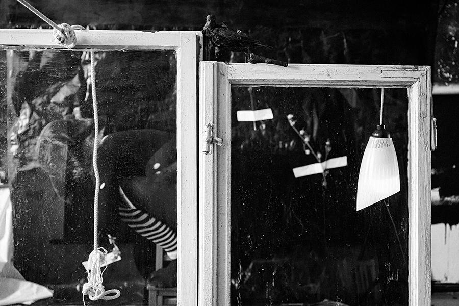 hinterdenfenstern_derrabe_antjekroeger2