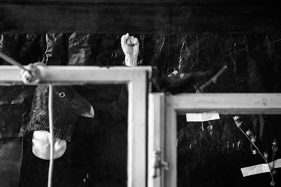 hinterdenfenstern_derrabe_antjekroeger5
