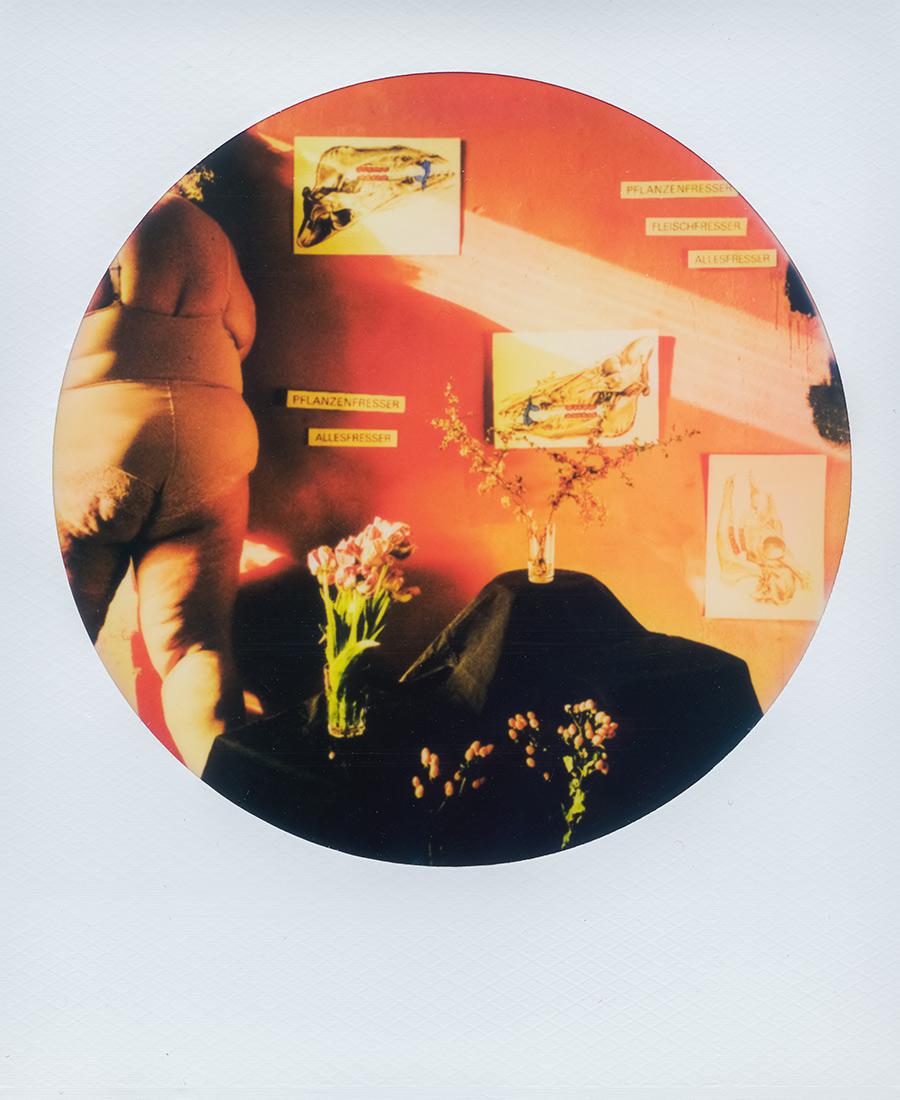 Licht frisst Mänade auf_antjekroeger_polaroid