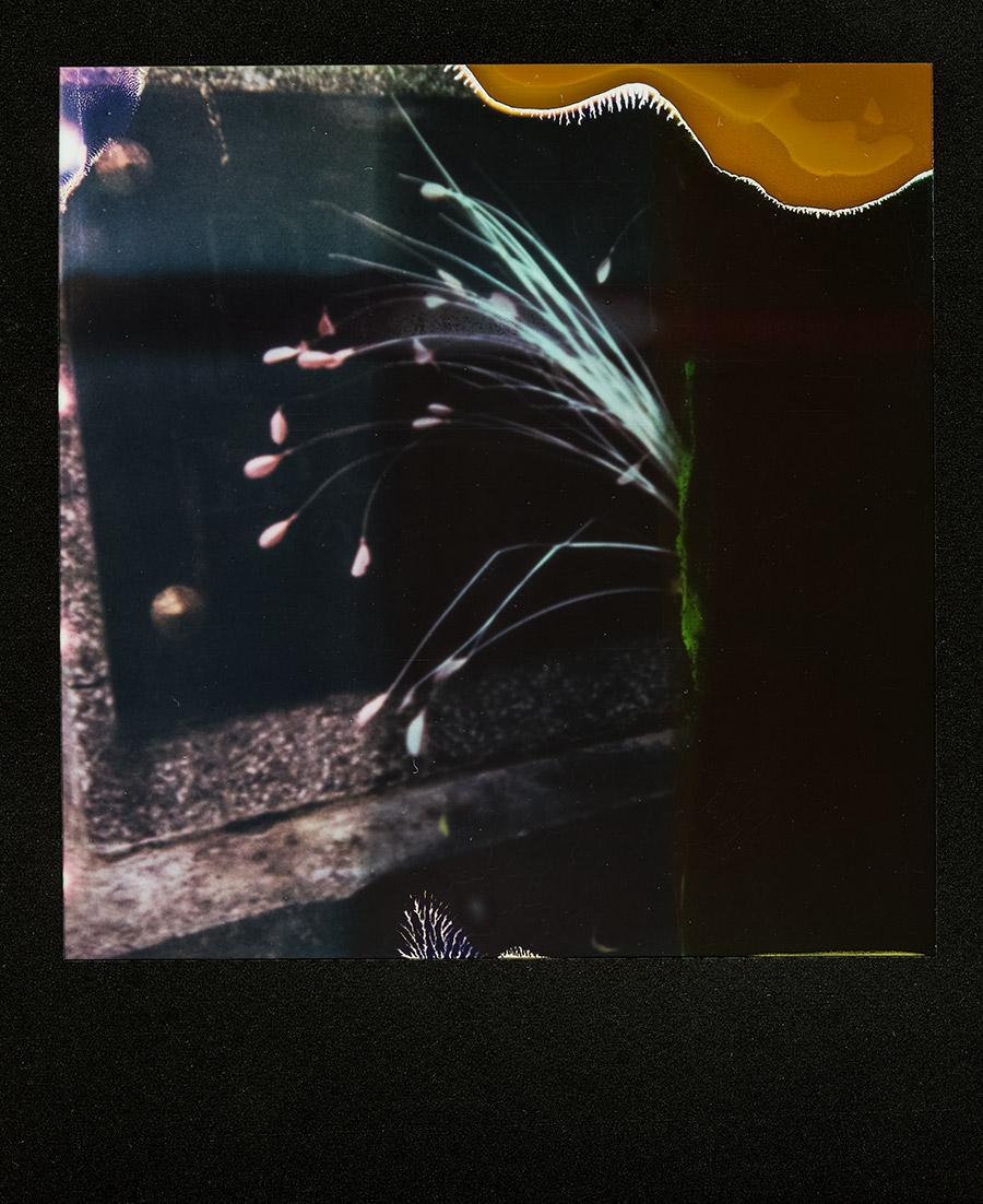lublin_polen_antjekroeger_polaroid